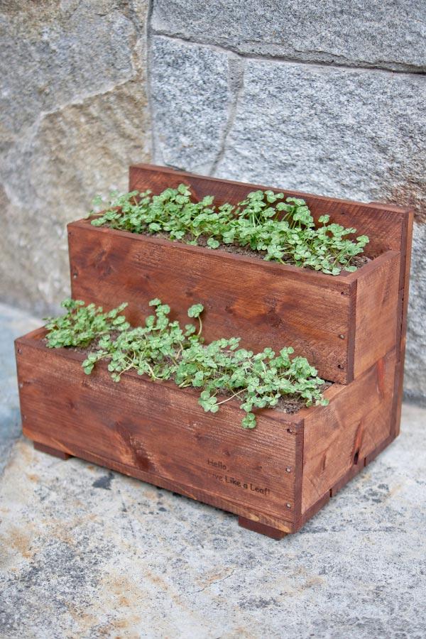 見元園芸とジョン・ムーアさんが開発した新商品