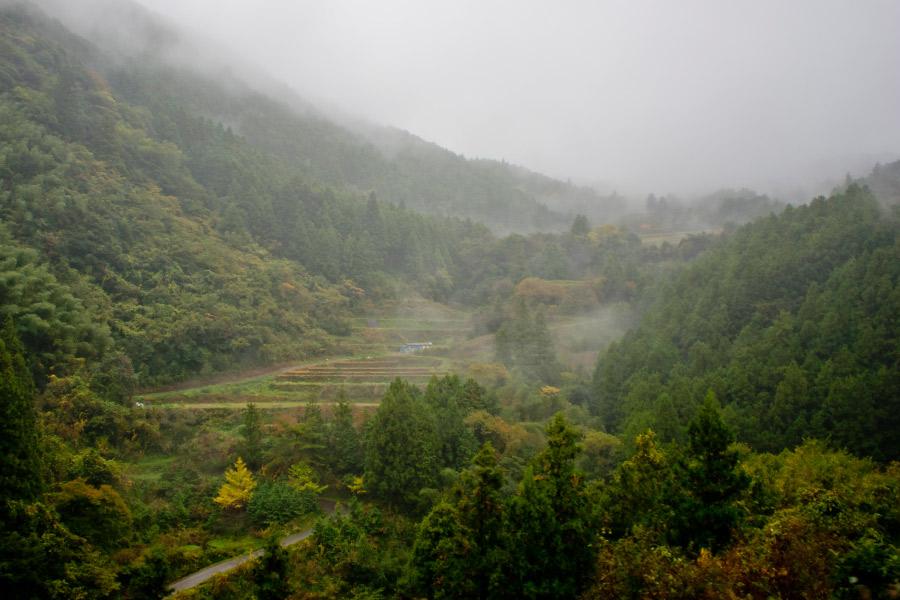 高知市中心部から車で30分ほどで見られる風景